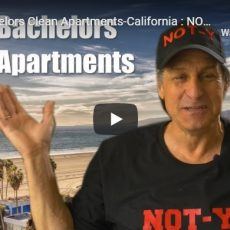 How Bachelors Clean Apartments-California : NOT-Y